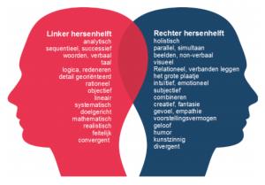 hersenhelften links en rechts van ratio en emotie